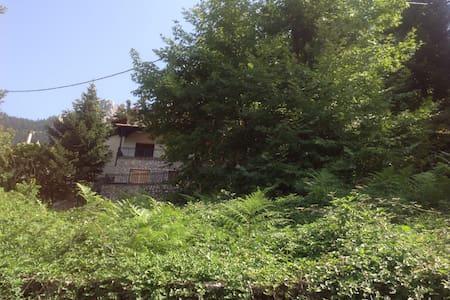 Villa in Elati - Elati