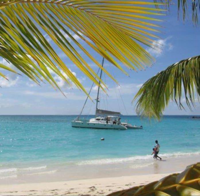 Catamaran Virgin Islands Vacation: Catamaran Sailing Antigua, BVI , Virgin Islands