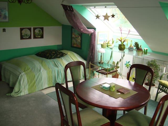 Apartment im  Dachgeschoß - Fürstenfeldbruck - Huoneisto