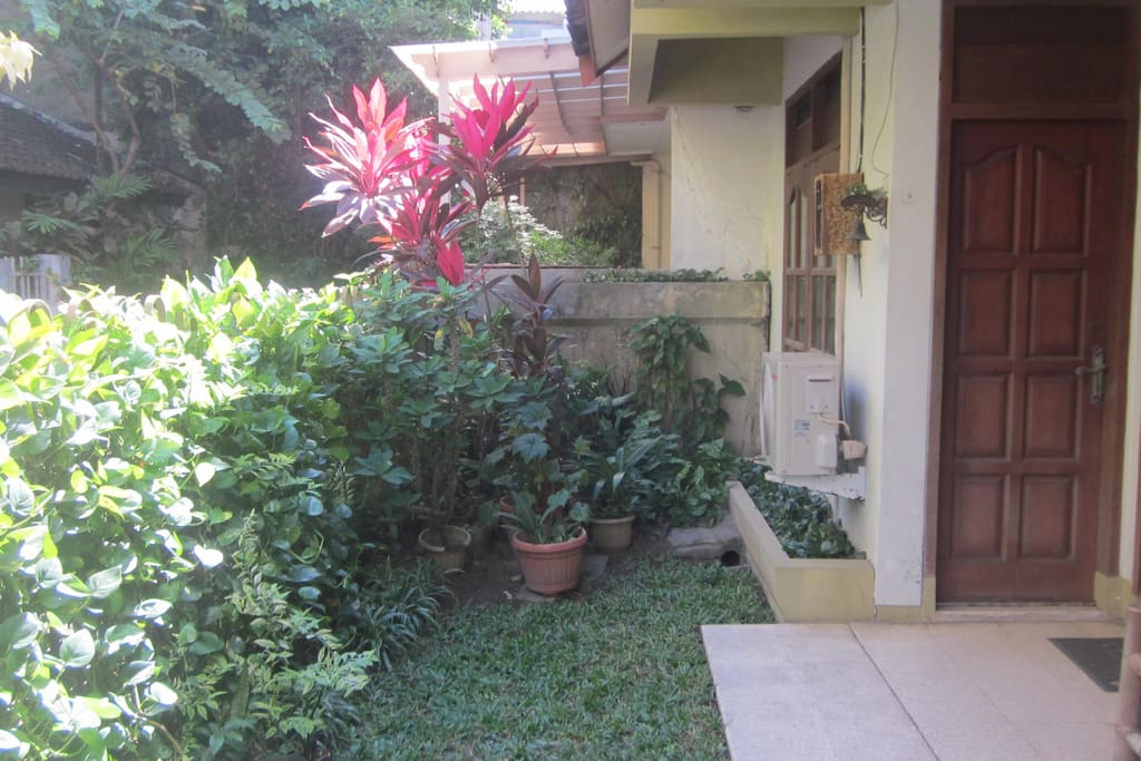 Our small garden in front of the house