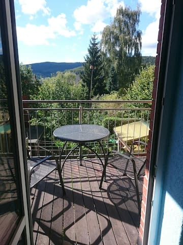 Vacational renatal with balcony in Aue 5 persons