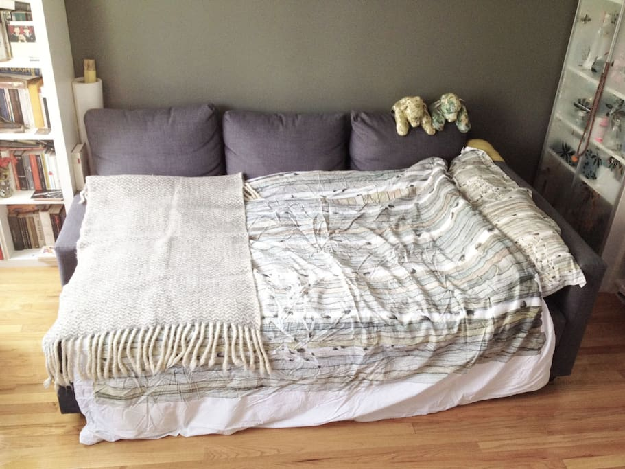 Sleeper sofa as a bed!