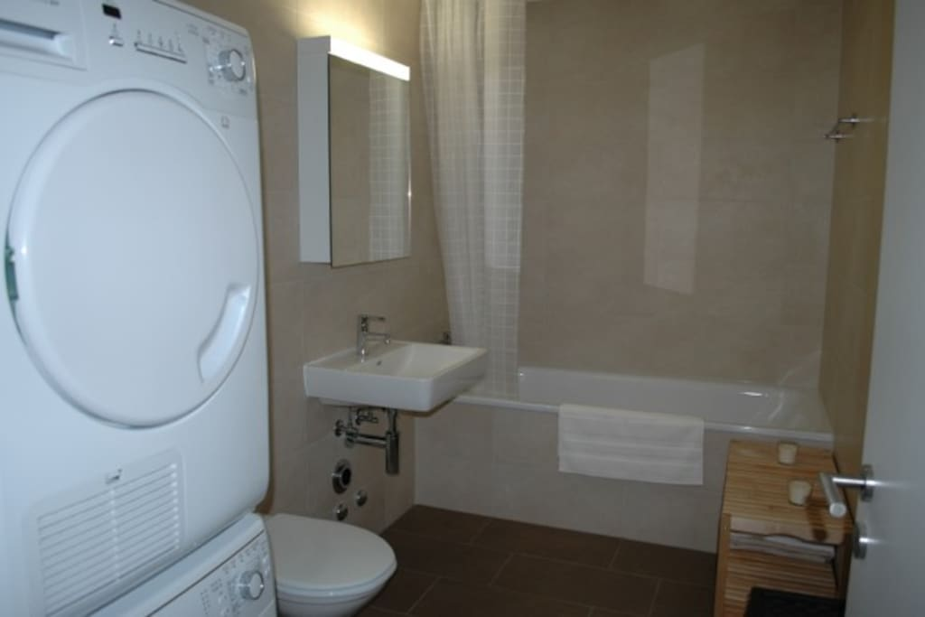 Bathroom equipped with washer dryer