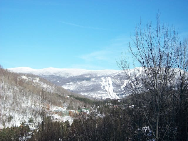 Tremblant, quite, view, good price - Mont-Tremblant - Appartement