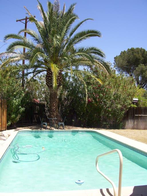 Enjoy the long pool season in Tucson