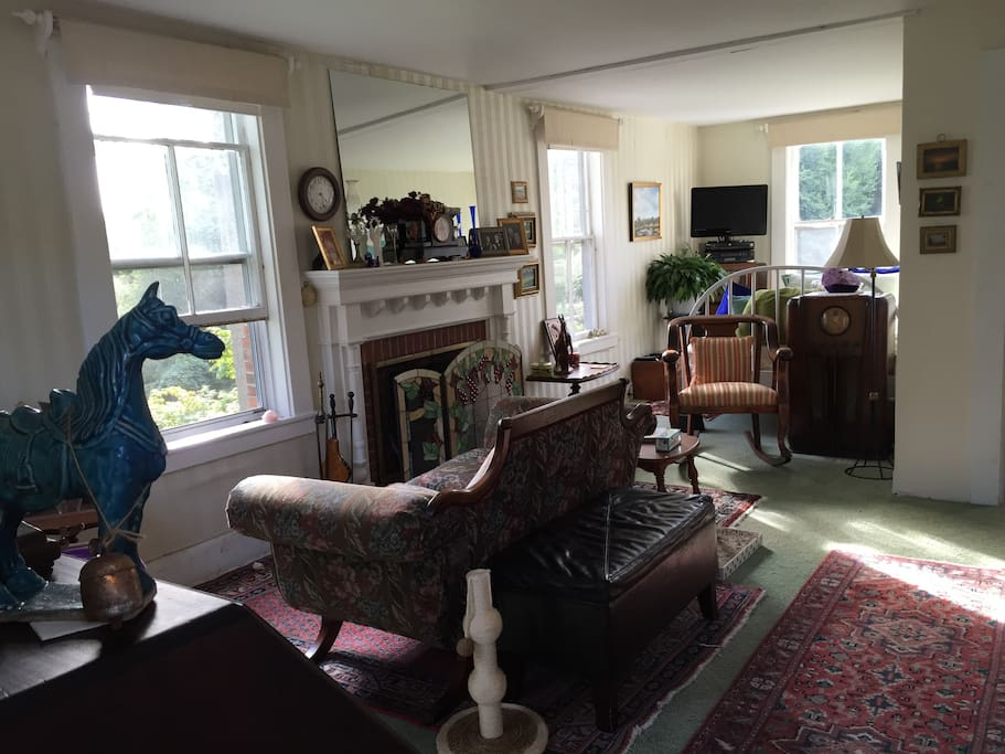 Living Room, pellet stove/fireplace, an extra full size bed and blue horse
