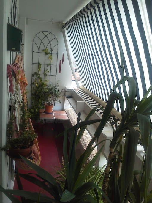 Balcon avec hamac et plantes vertes