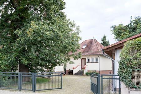 Ferienhaus Marone - Fritzlar - Rumah