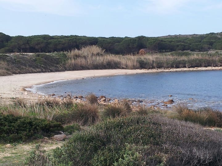 Total tranquility 300m from the beach. Flat for 2