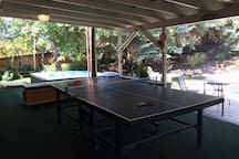Year round Ping Pong.