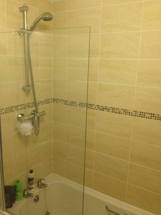 the shower/bath