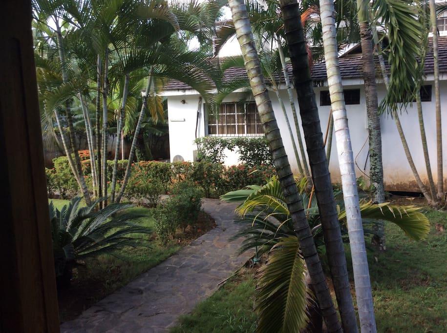 Chemin d accès au bungalow