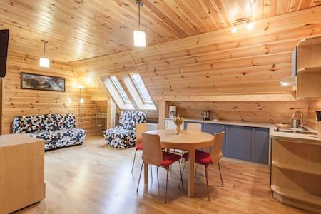 Two floor appt in the Mountains 13a - Zakopane - Lägenhet
