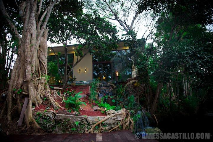 Luxury Acre Home,Pool,Pond,Treehous - Miami - House