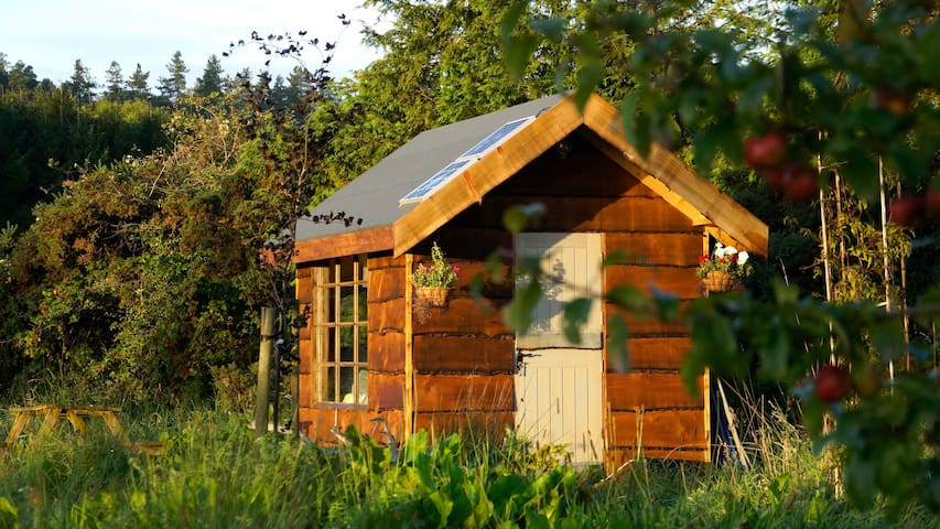 Cosy Secluded Cabin - Rathdrum