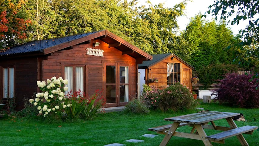 Delightful Log Cabin In Wicklow Guesthouses For Rent In