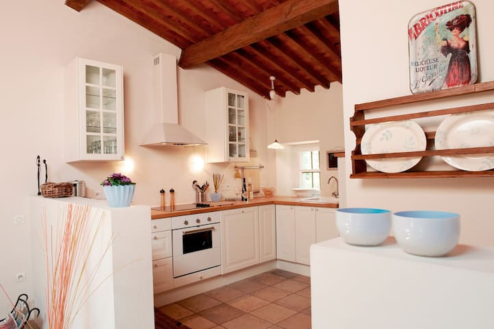 Charming french bastide with pool - Venejan - House