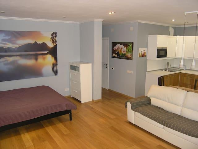 Просторная и очень уютная квартира - Nakhabino - Huoneisto
