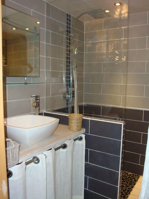 salle de bain douche RdC
