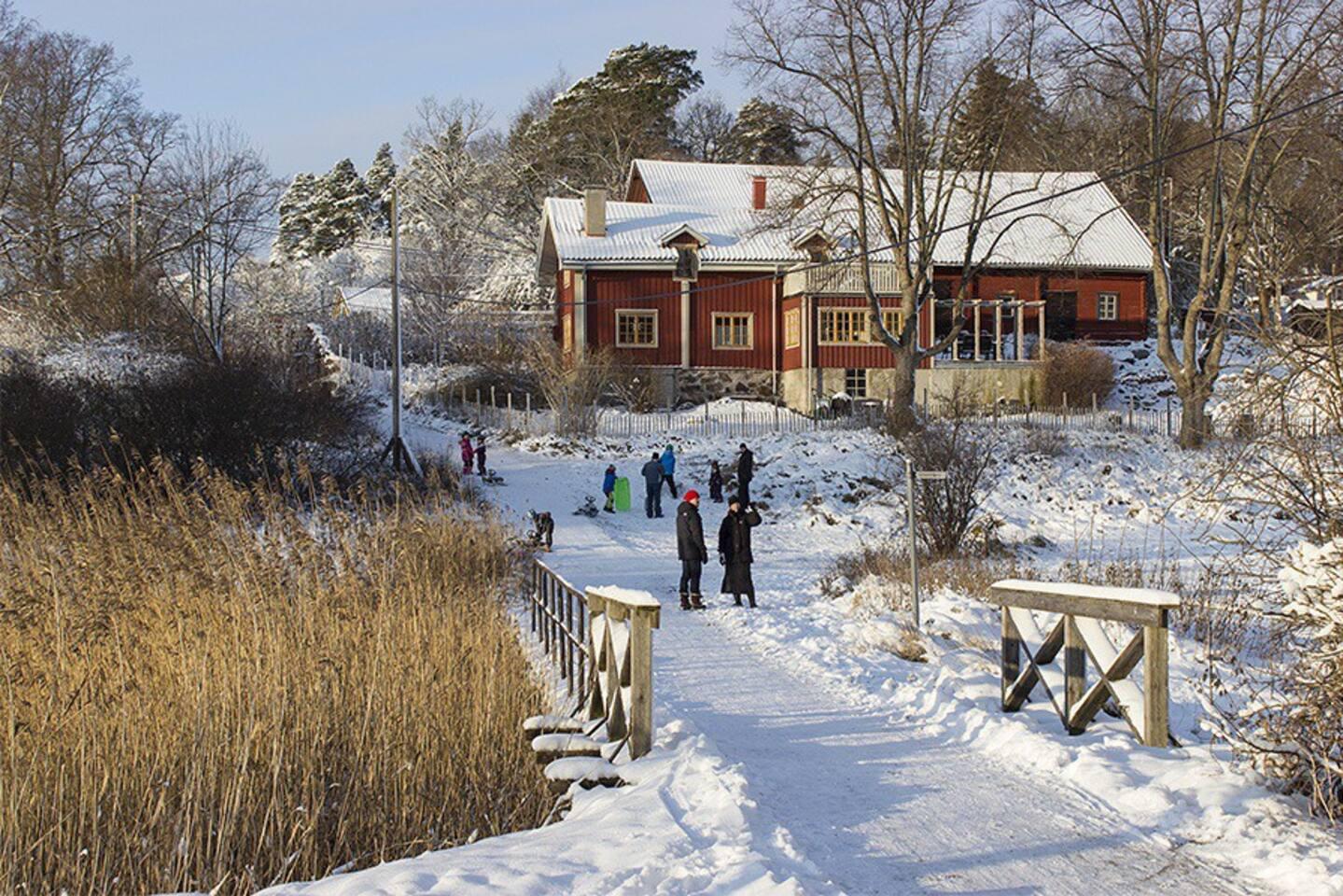 Winter on Tranholmen