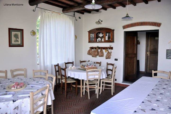 BED & BREAKFAST IN AGRITURISMO - Montemagno - Bed & Breakfast