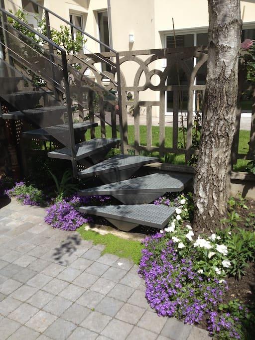 escalier vers entrée de la maison