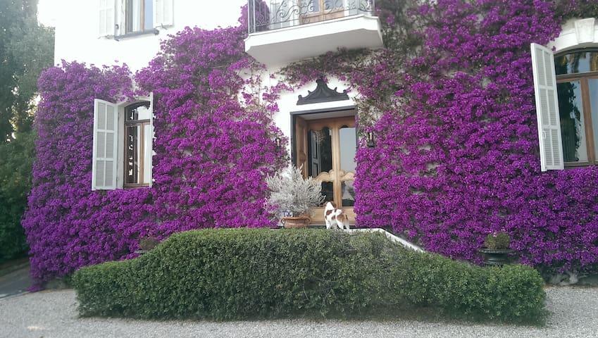 San Luca Charm Villa - Imperia - Villa