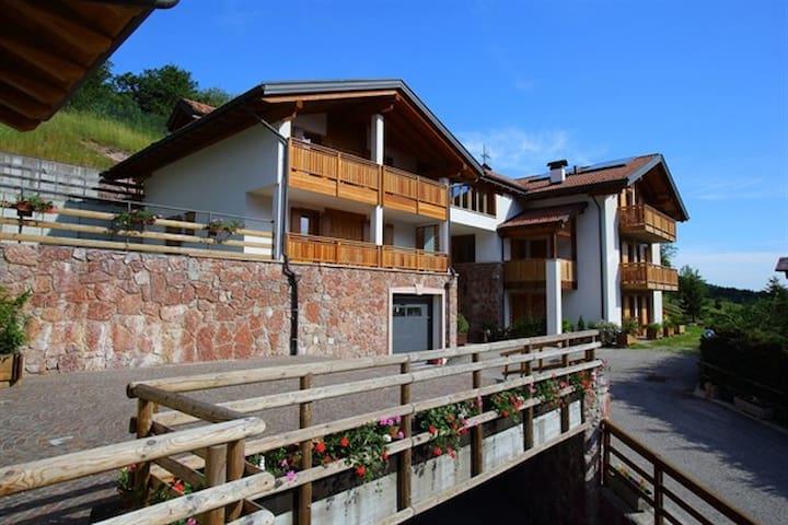 Betulla Apartment - Andalo - Apartamento