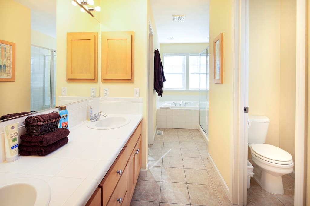 Master bath: double sinks, separate toilet, soaking tub, shower, walk-in closet, and skylight