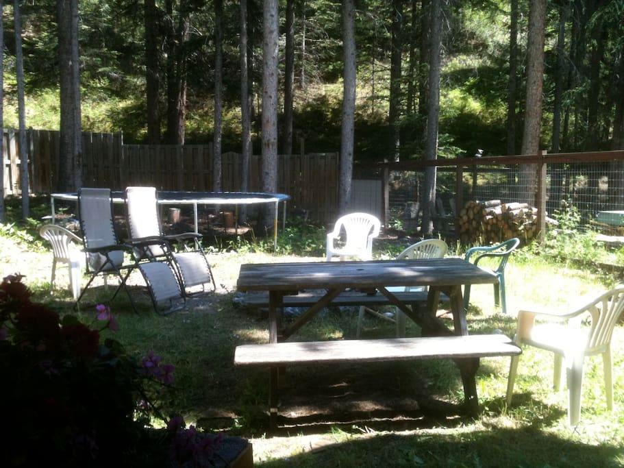 Wonderful back yard in the forest. Outdoor sitting area backing onto forest reserve and hiking/ biking trails.