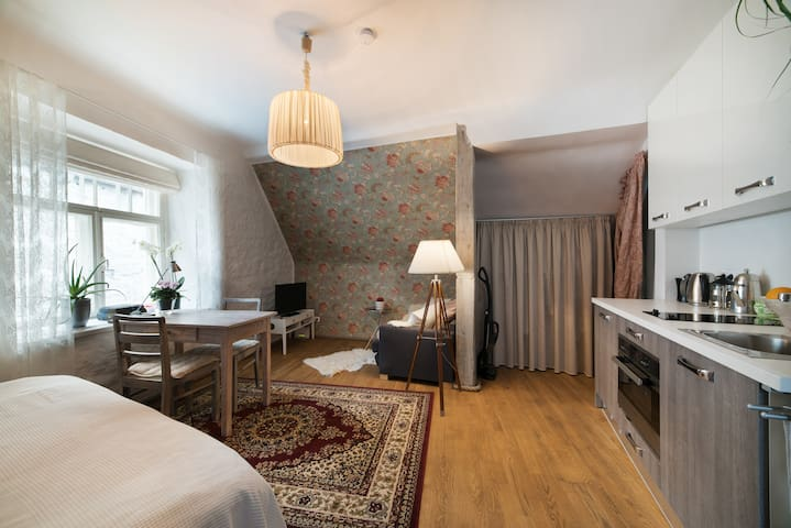 Cosy little penthouse in Old Town - Talin - Apartamento