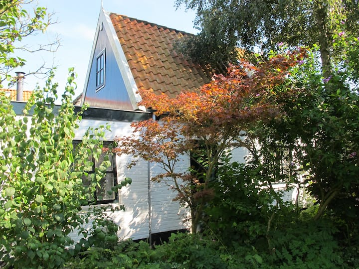 summer cottage on island of Texel