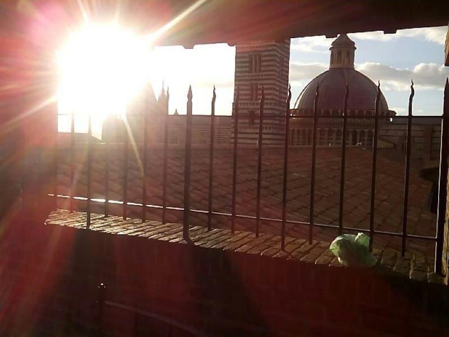 Museo dell'OPA balcony views (cattedral of Siena) Panorama dal facciatone del museo dell OPA