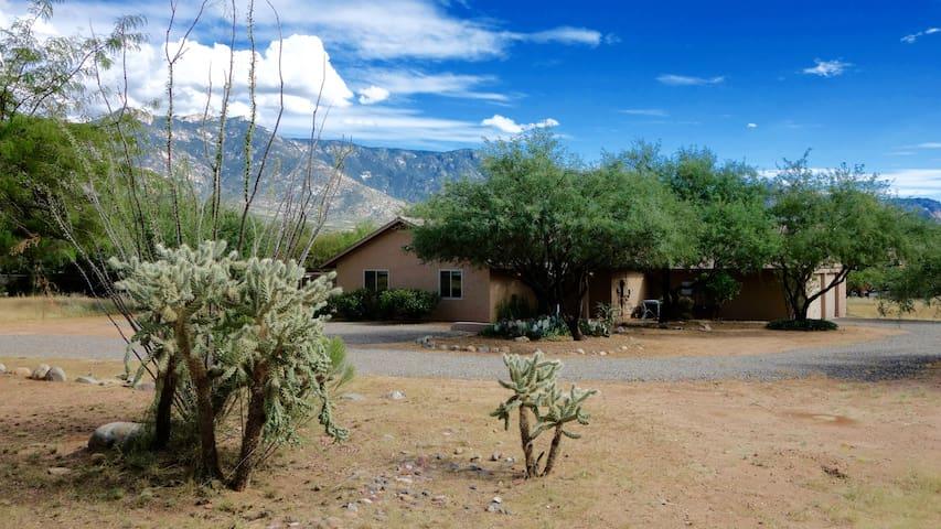 Catalina Desert Retreat, Tucson
