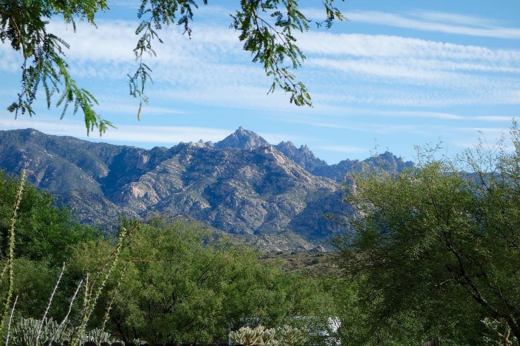 Santa Catalina Mountains from the backyard