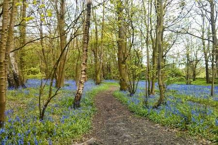 Rural near M6 &Lancaster University - Casa
