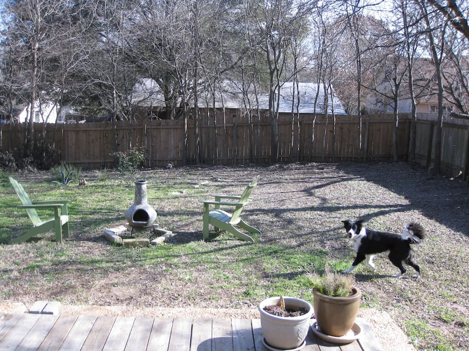 Here is the nice, large backyard. It's a perfect place to enjoy your morning coffee or relax at the end of the day on the patio. No, our dog will not be here during your stay!