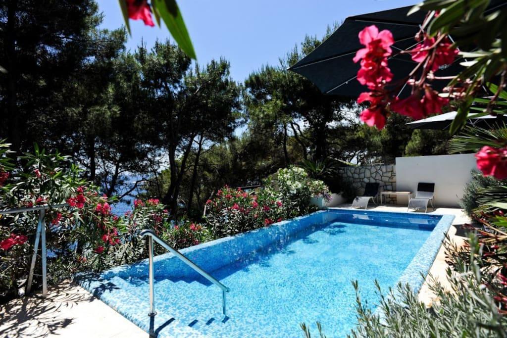 Swimming pool, 24 meters squares pool