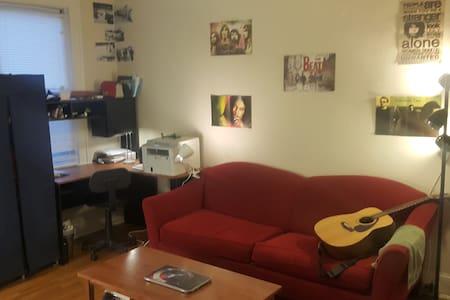 Sunny, safe and spacious!! - Washington - Apartment