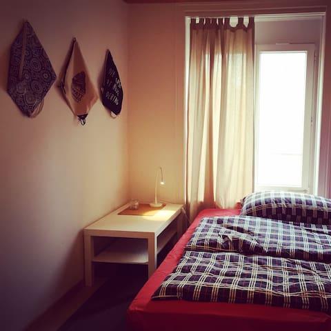 Grosses Zimmer mitten in Zürich