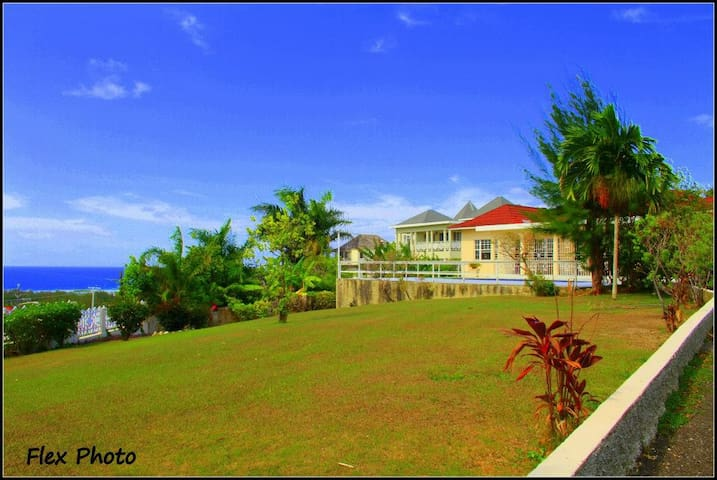 Ocean view&Pool from $19 in Montego
