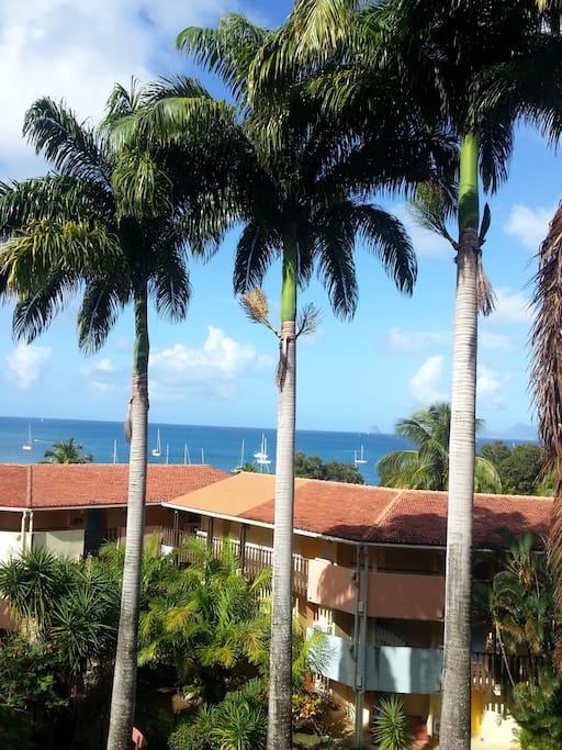 Magnifique vue sur la mer des Caraïbes