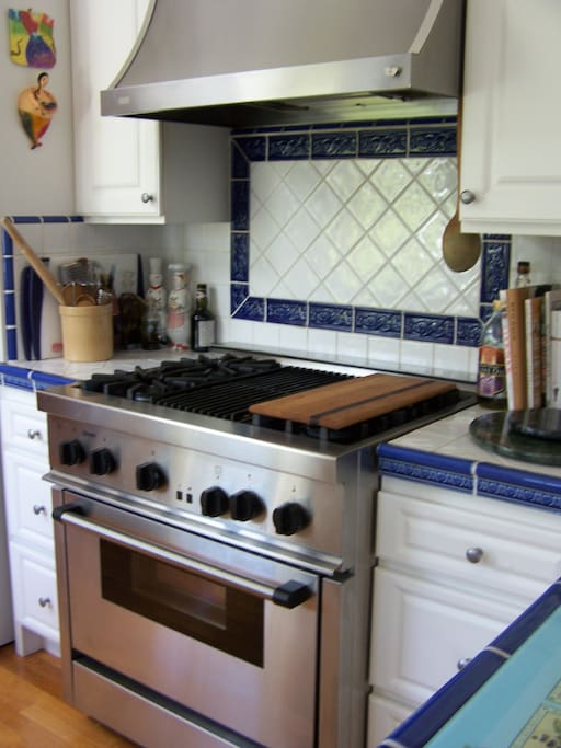 Thermador Chef's professional stove & oven with French Fan & hood