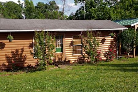 Hwy 123 Cabin Rental - Hasty