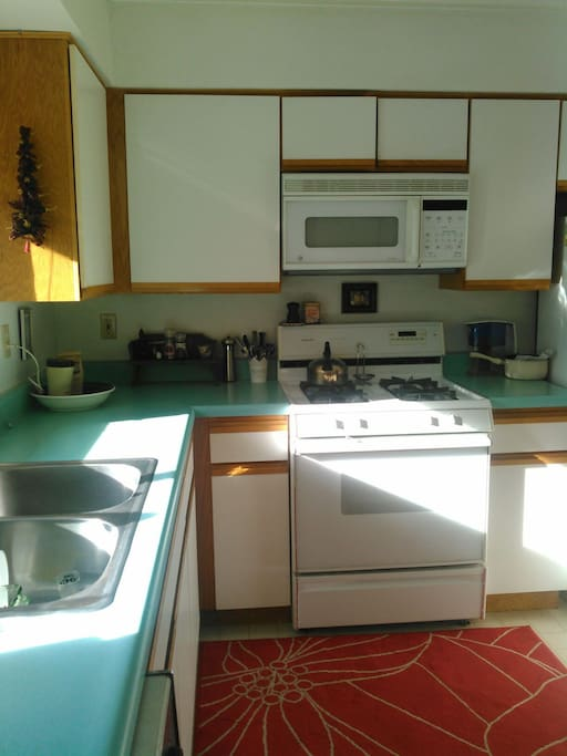 Kitchen, sink, stove, microwave, tea kettle. Basics will be provided such as cooking oil, tea bags and spices.
