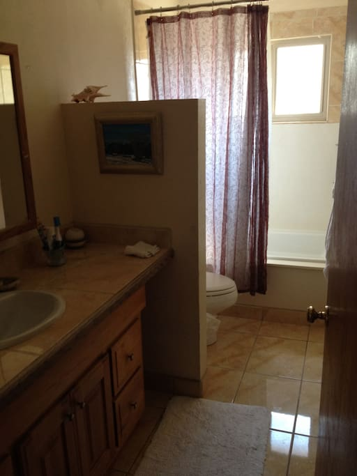 Private bathroom with jetted tub