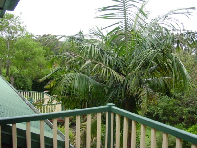 Gold Coast Rainforest, King Suite - Springbrook - Apartamento