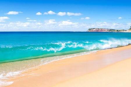 Light & Modern Beachside app - Collaroy - Appartement
