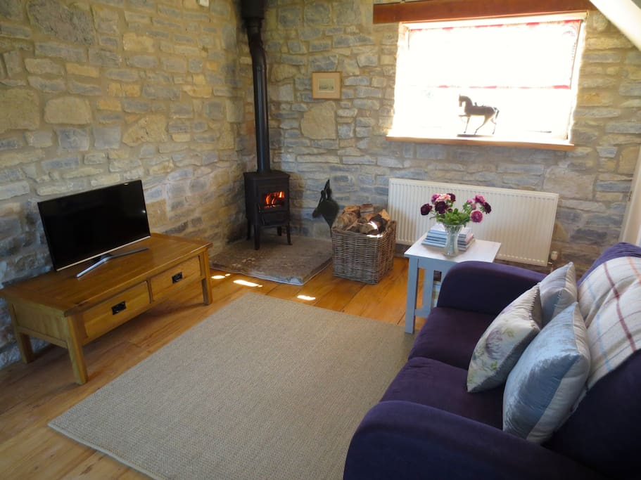 Snug sitting room with woodburning stove, books, and flatscreen TV for cosy evenings