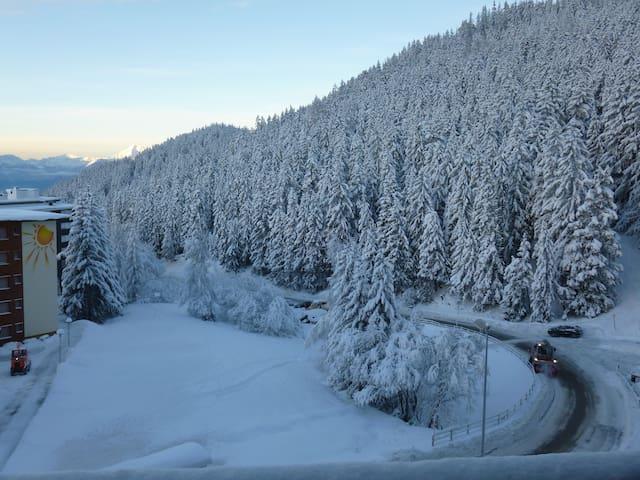 Rechts auf dem Bild, wo das Auto steht, endet die Skiabfahrt zum Haus